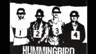 End Babies - Hummingbird of Death