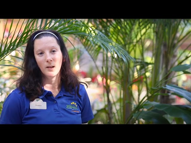 Working in Park Quality at ZooTampa