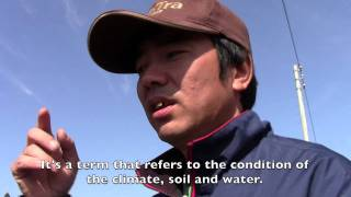 Radiation and Japan: Interview with Satoshi Imai, Rice Farmer