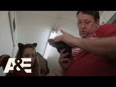 Storage Wars: Rene Plays Ball (Season 12) | A&E