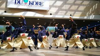 かんしゃら@第18回神戸よさこい祭り・デュオこうべ