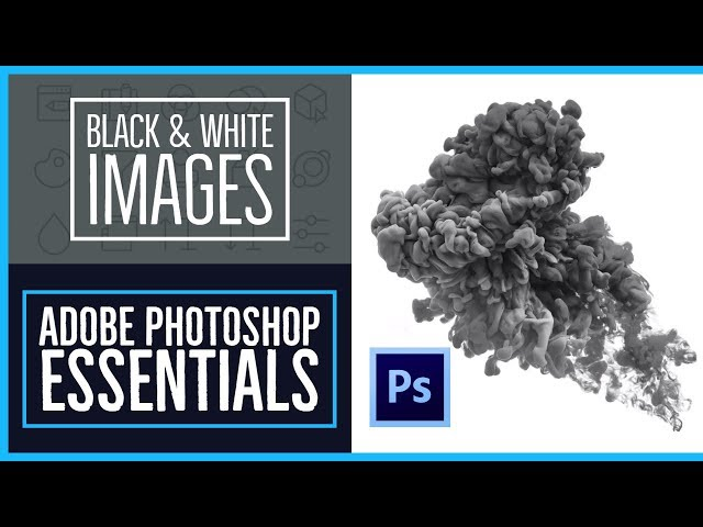 How to make an image black & white in Photoshop - Photoshop CC Essentials [9/86]