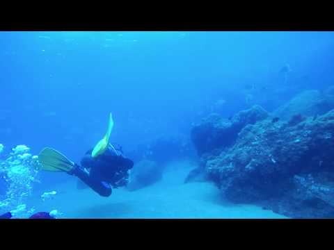 Diving Lanzarote - 32