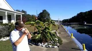 Deep Creek Lock Conch Music