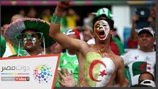 شاهد.. فرحة جمهور الجزائر الهيستيرية بعد إحراز هدف في كوت ديفوار