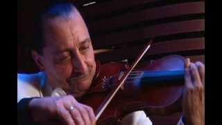 Sorin Ferat Waltz Medley Johann Strauss