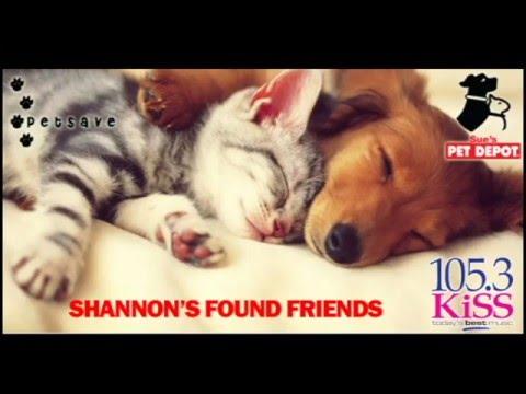 KiSS Found Friends