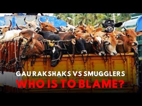 How Media Has Read The Cow Vigilantism-Muslim Lynching Problem All Wrong