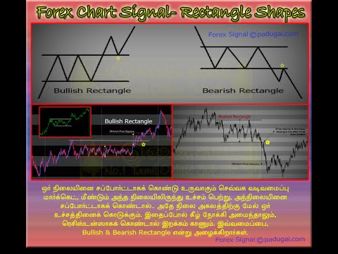 Forex currency trading training