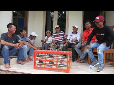SILATURAHMI SODARA JAKARTA