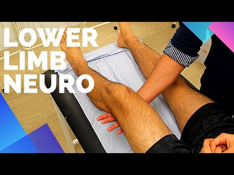Lower Limb Neurological Examination - OSCE Exam Demonstration
