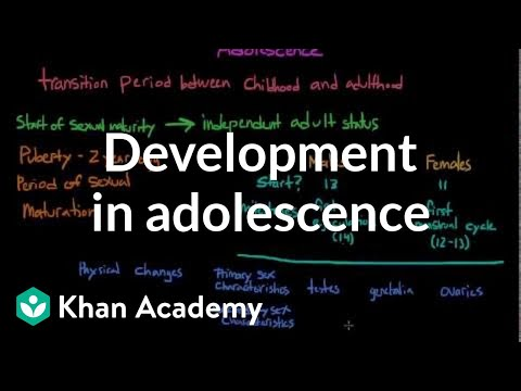 Physical development in adolescence | Behavior | MCAT | Khan Academy