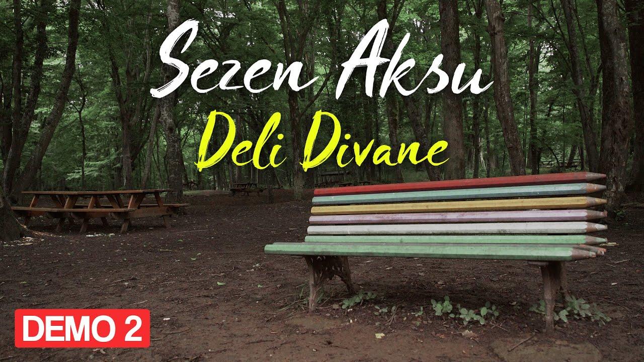 Sezen Aksu - Adı Menekşe (Lyrics   Şarkı Sözleri)