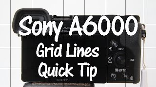 Sony A6000 Quick Tip - Grid Lines
