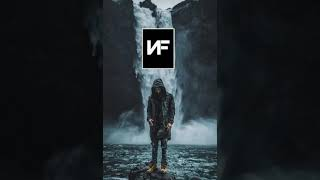 NF The Search Slowed