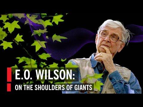 E.O. Wilson: On The Shoulders Of Giants