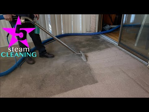 steam carpet cleaning we never say no to dirty jobs