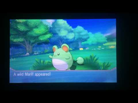 Shiny Marill Oras on Chain Fishing Pokemon X And Y Locations