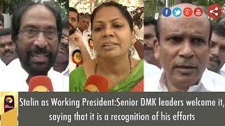 Senior DMK Leaders Views on MK Stalin as DMK's Working President