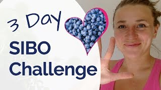 SIBO Diet - The 3 Day Challenge - 3 Power Foods to Start Healing Your SIBO Symptoms FAST & Naturally