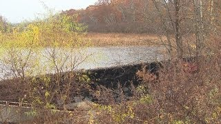 Dam removed after flooding trouble