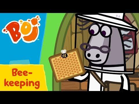 Boj - Bee-Keeping | Cartoons for Kids