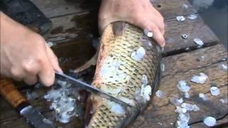 Тестирование рыбацкого ножа. Нож для чистки рыбы от чешуи видео. Отзыв
