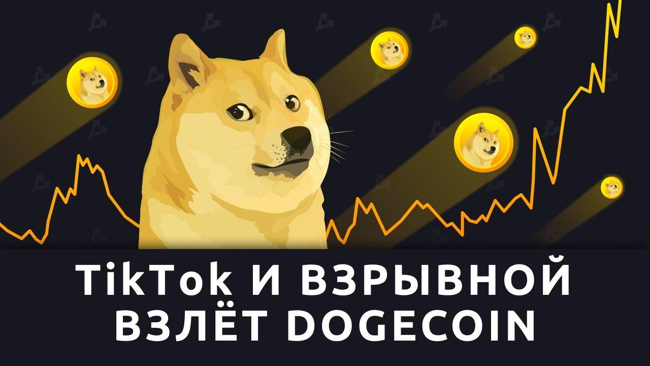 Tik Tok и взрывной взлёт Dogecoin