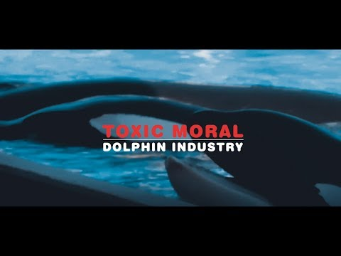 Toxic Moral - Dolphin Industry