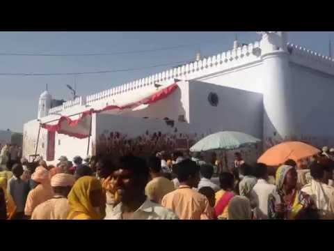 Jaharveer Goga Peer Ji Samadhi (Temple) - Gogamedi Fair
