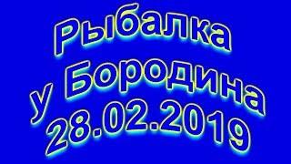 Риболовля у Бородіна 28.02.2019 (Рибак 100 рівня)
