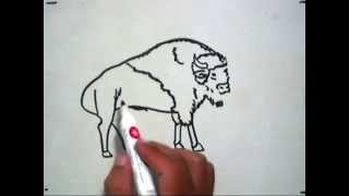 How to Draw a Bison (Cara Menggambar Bison)