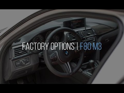 The Options I Chose on my F80 M3 and Why
