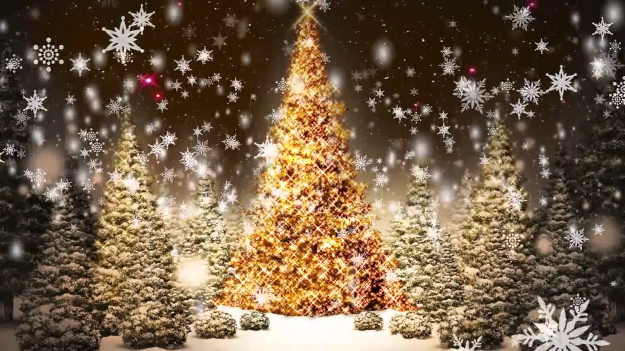 футаж новогодняя елка анимация