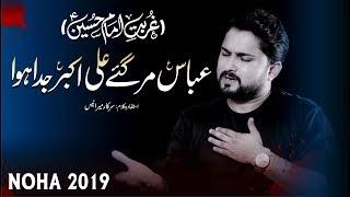 Nohay 2019 - Abbas Mar Gaye Ali Akbar Juda Howa | Syed Raza Abbas Zaidi | Mola Hussain Noha 2019