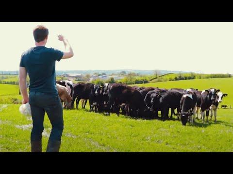 Lee Matthews - The Farmer Wants A Wife (Official Music Video)
