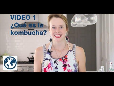 ¿qué-es-la-kombucha?