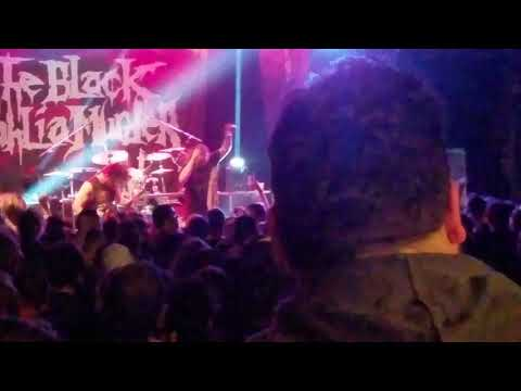 The Black Dahlia Murder - Everything Went Black/ Band shout out
