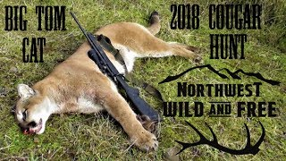 FoxPro Inferno Calls in Cougar - Tracking and Killing a Mountain Lion in the Northwest
