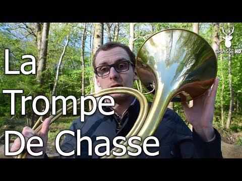 La Trompe de Chasse - Fanfares & Conseils du Champion International Guyaume Vollet - Chasse HD