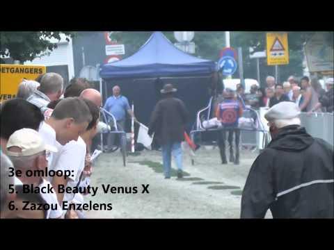 Korte Baanflits - Black Beauty Venus in Wateringen
