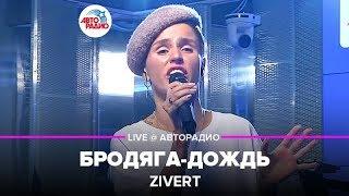 Download 🅰️ Zivert - Бродяга-дождь (LIVE @ Авторадио, презентация альбома Vinyl #1) Mp3 and Videos