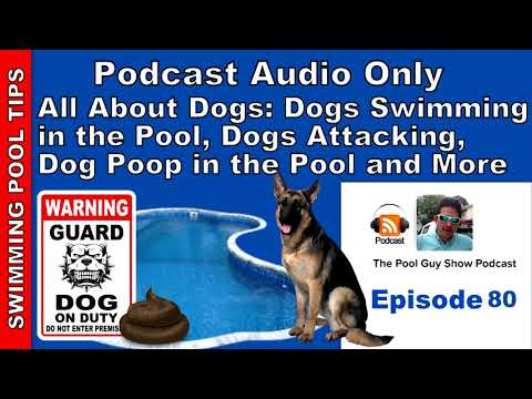 Dogs and Your Swimming Pool: Dogs that Swim, Dogs that Attack and Dog Waste in the Pool