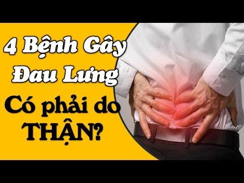 Đau lưng có phải bị mắc bệnh thận không: 4 yếu tố liên quan cần xem xét ngay