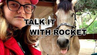 POLITICS - SCANDALS and HORSES - ROCKET TALKS