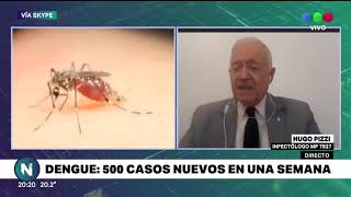 Dengue: 500 nuevos casos en siete días