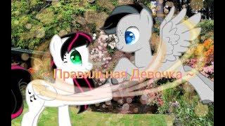 [Пони клип| PMV] - Правильная девочка |Ksysha fox