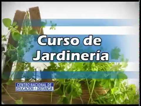 Curso online de jardiner a youtube for Curso de jardineria