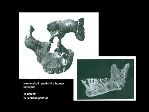 ශ්රි ලංකාවේ ප්රාග් ඵෛතිහාසික ප්රජාව පිළිබද ගවේෂණයේ තොරතුරු -  Sri Lankan prehistoric man