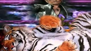 Download Video VIDEO DE 8 MN 48  wmv 2 titre MP3 3GP MP4